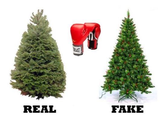Real-vs-Artificial-Christmas-Tree